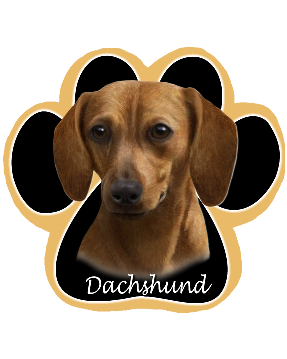 Dachshund, Brown - Computer Mousepad